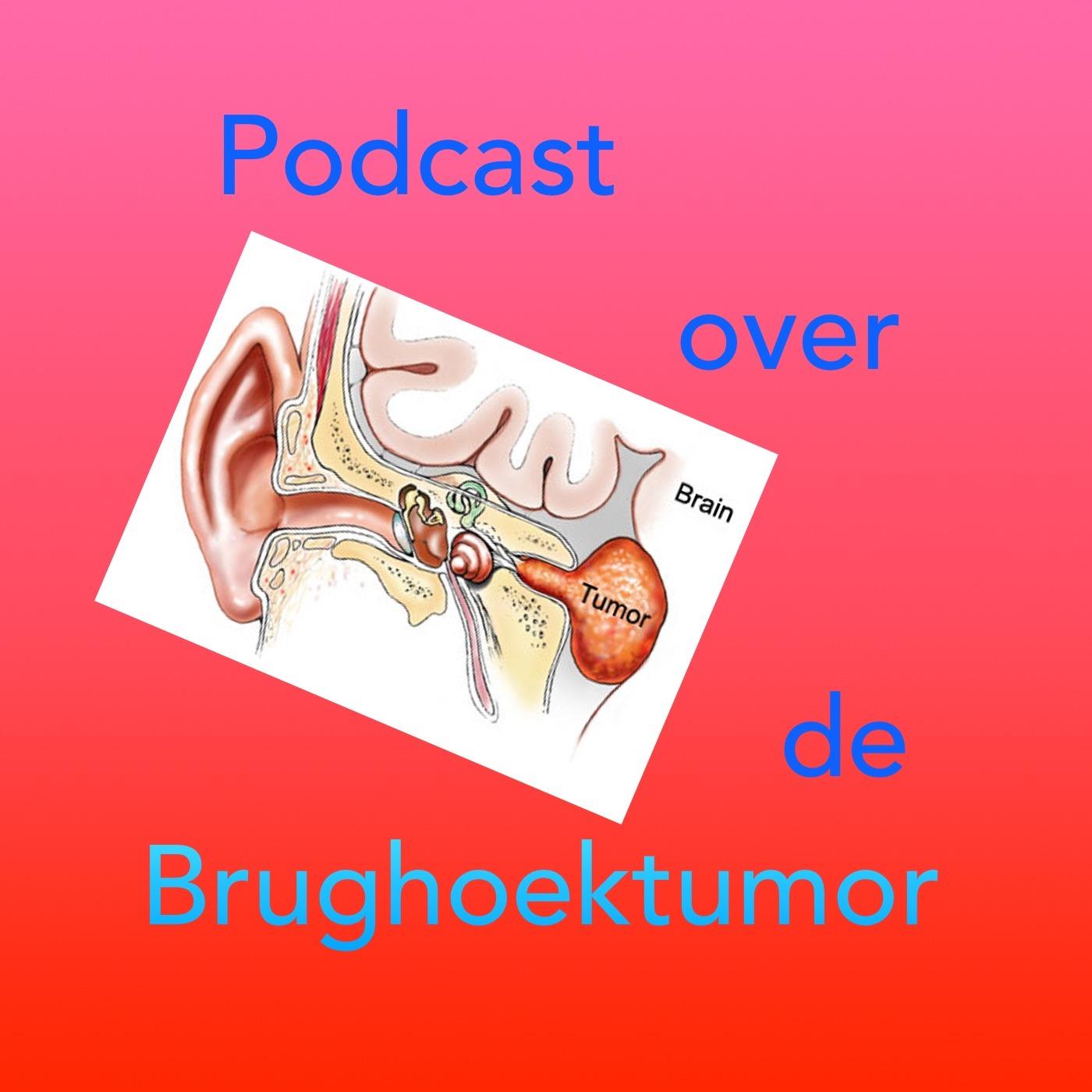 Brughoektumor.info