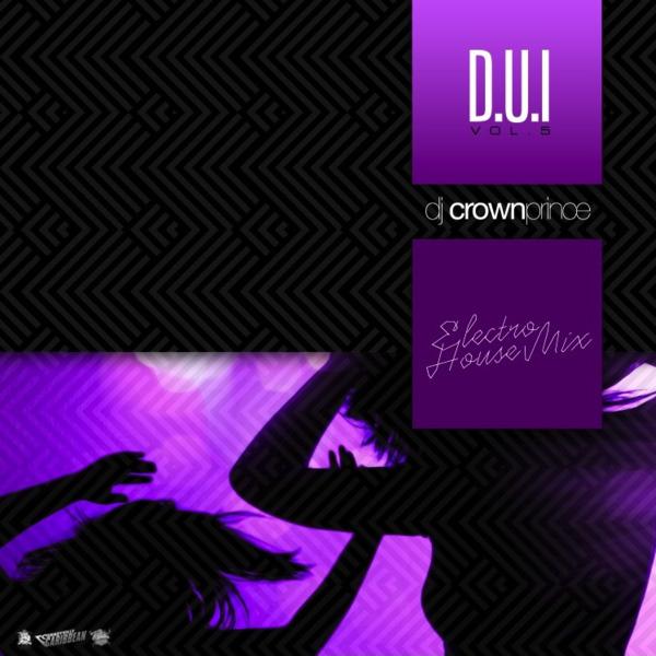 D.U.I. v5