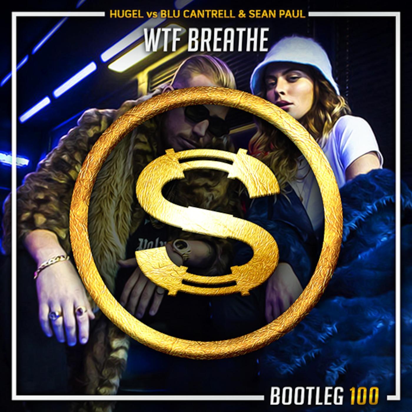 Hugel vs Blu Cantrell x Sean Paul - Wtf Breathe (Da Sylva bootleg)
