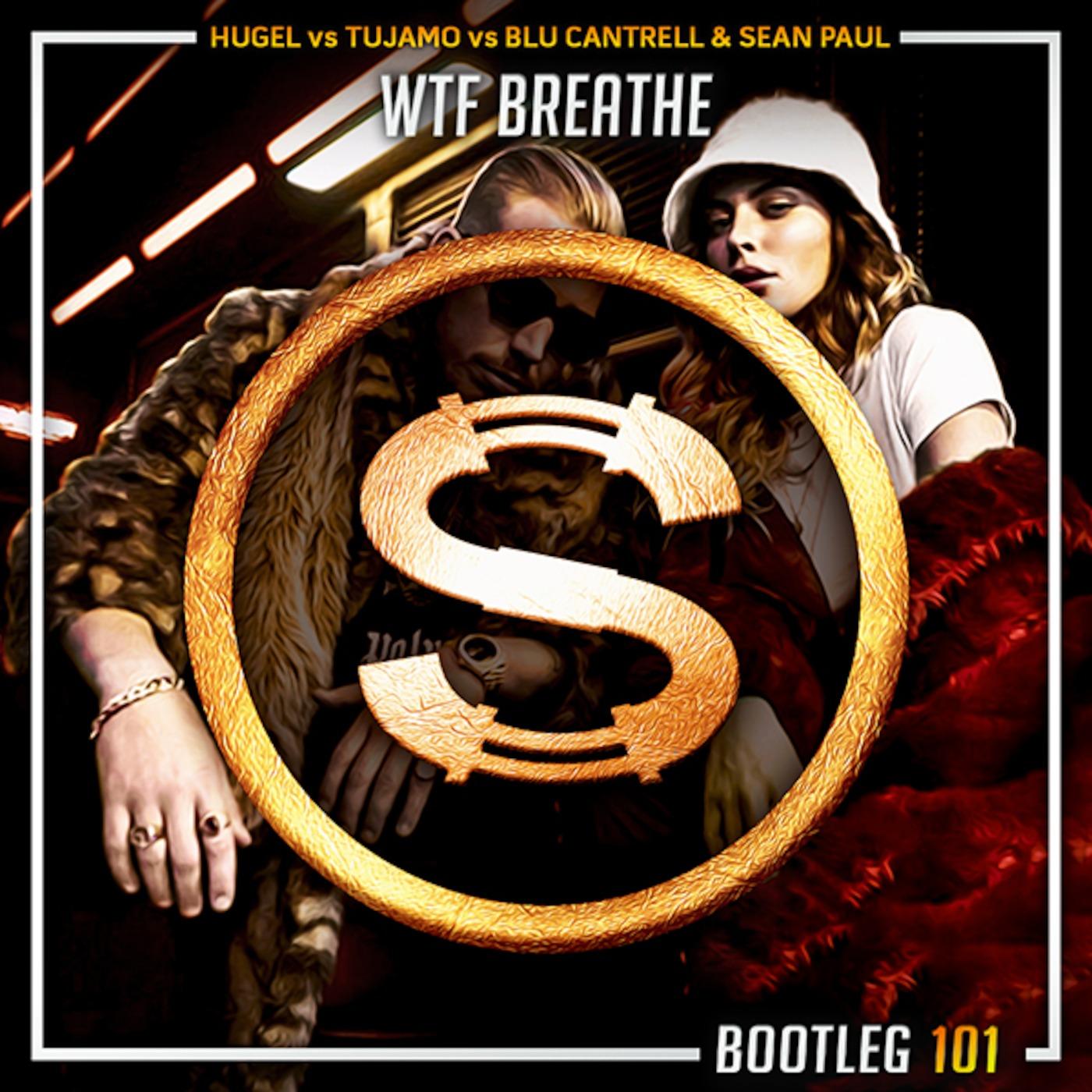 Hugel vs Tujamo vs Blu Cantrell x Sean Paul - Wtf Breathe (Da Sylva bootleg)