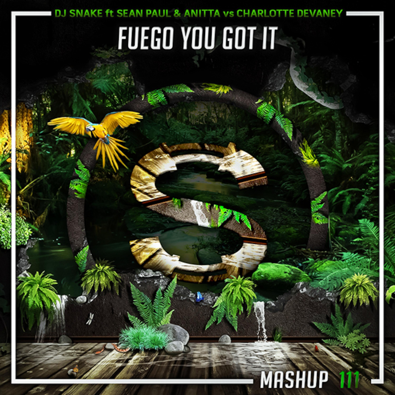 Dj Snake x Sean Paul x Anitta vs Charlotte Devaney x Tanya Lacey - Fuego You Got It (Da Sylva mashup)