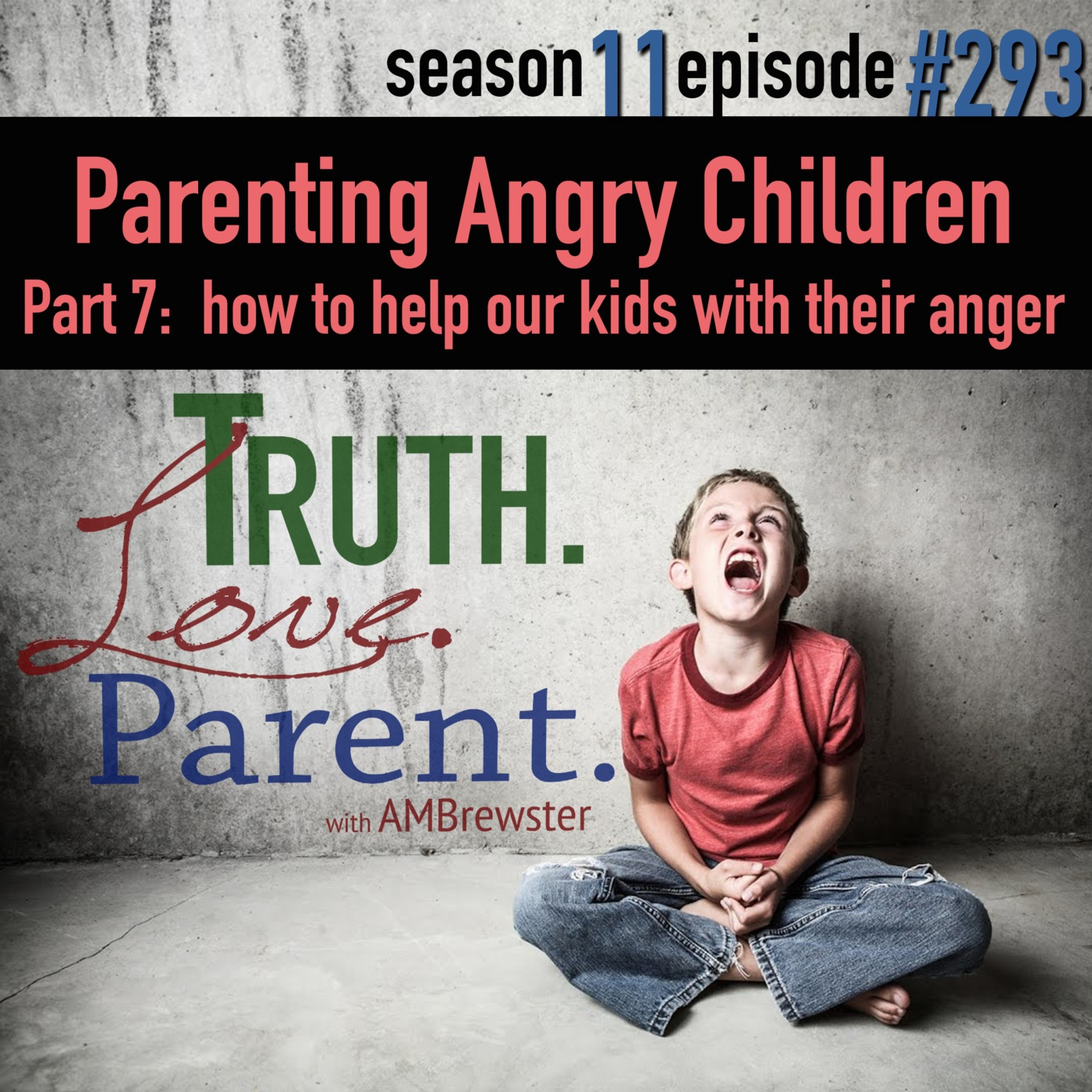 TLP 293: Parenting Angry Children, Part 7   How To Help Our