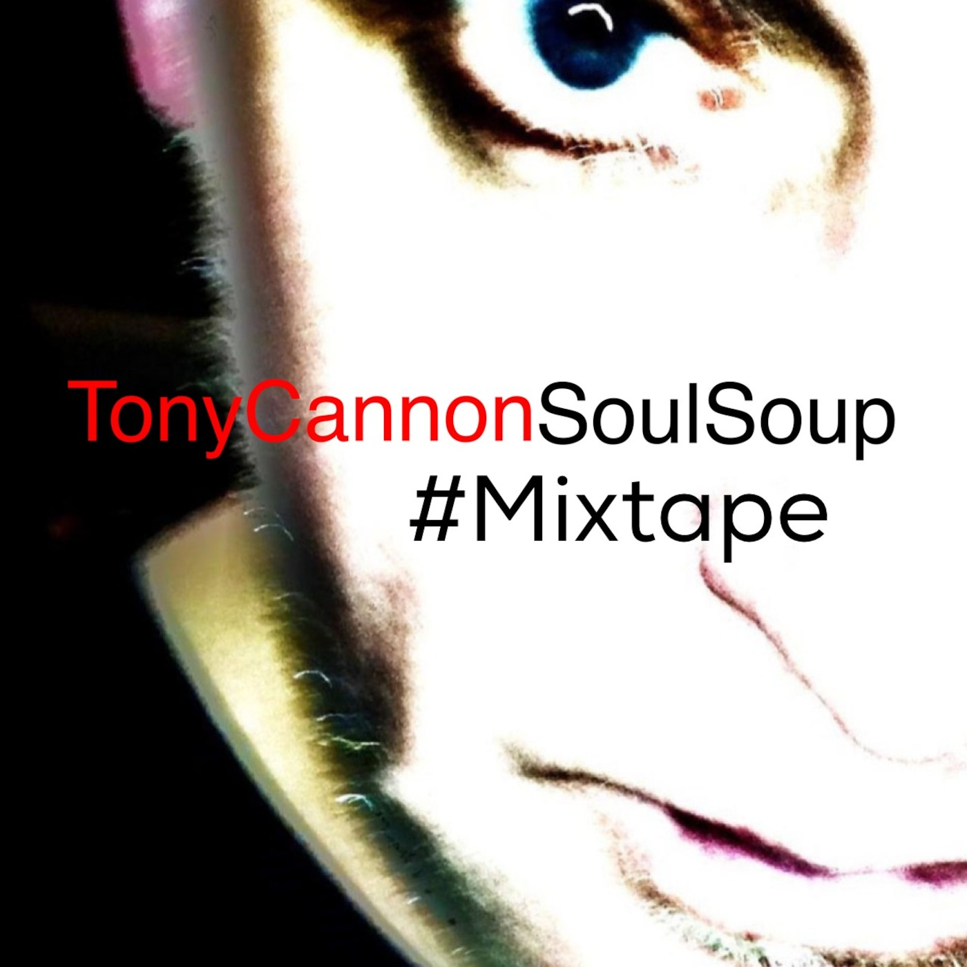 Tony Cannon -  Soul Soup