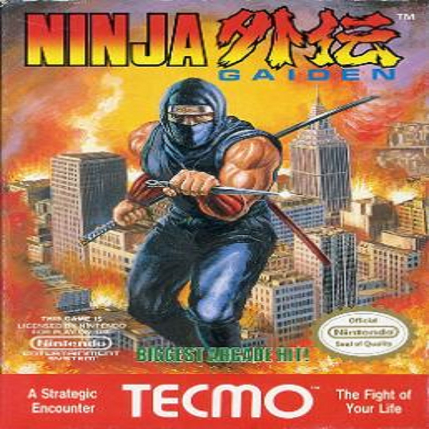Ninja Gaiden 2 Dudes And A Nes Podcast