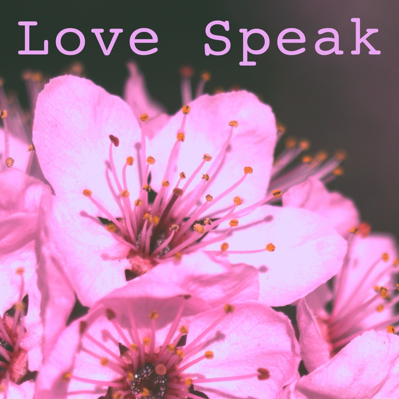 Love Speak