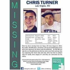 Chris Turner: Web Of Lies