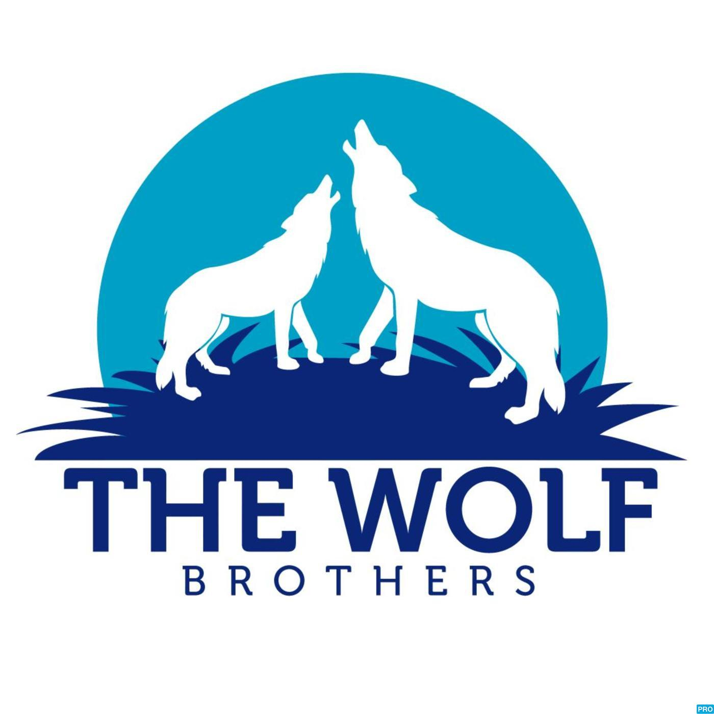 The Wolf Brothers - Minnesota Timberwolves Podcast