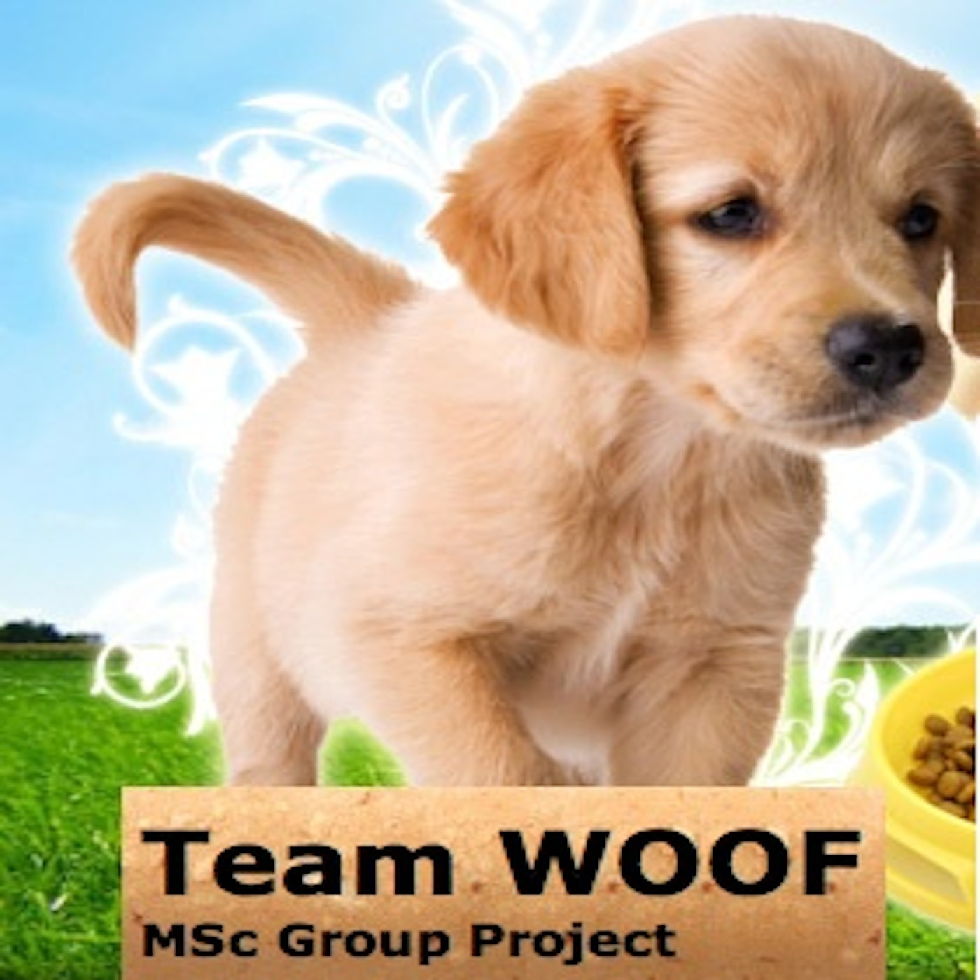 Team WOOF Podcasts