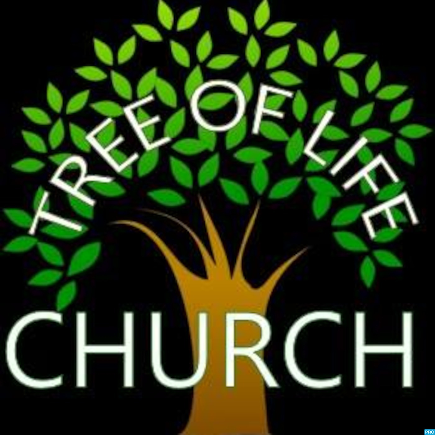 Tree of Life Assembly of God