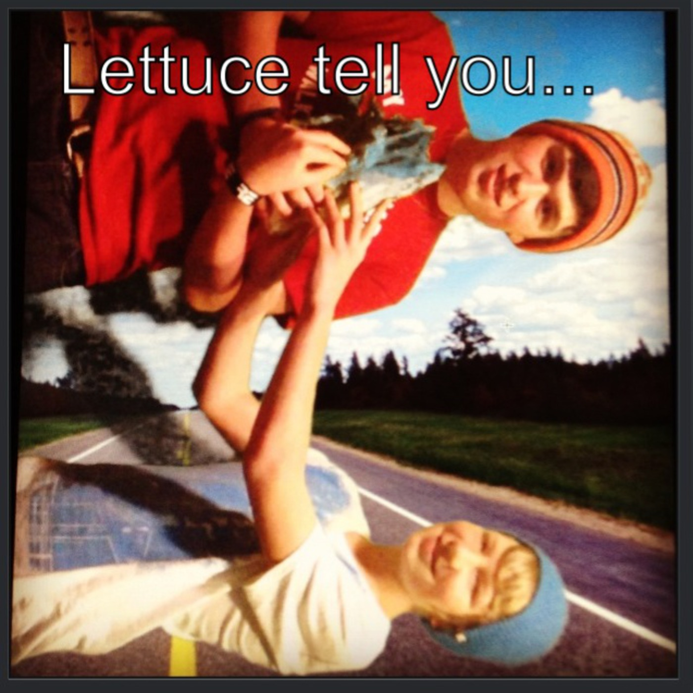 Lettuce tell you...