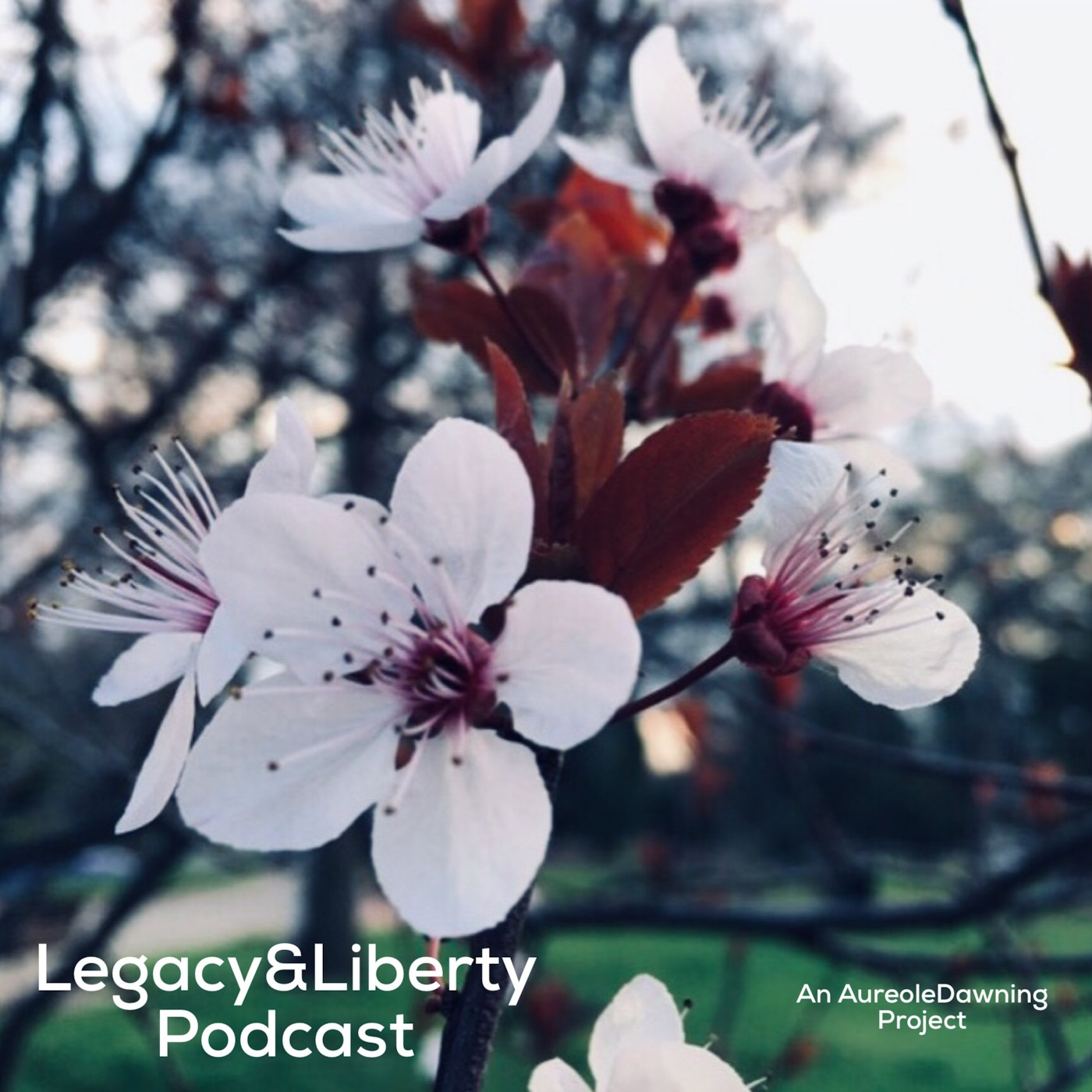 Legacy&Liberty Podcast