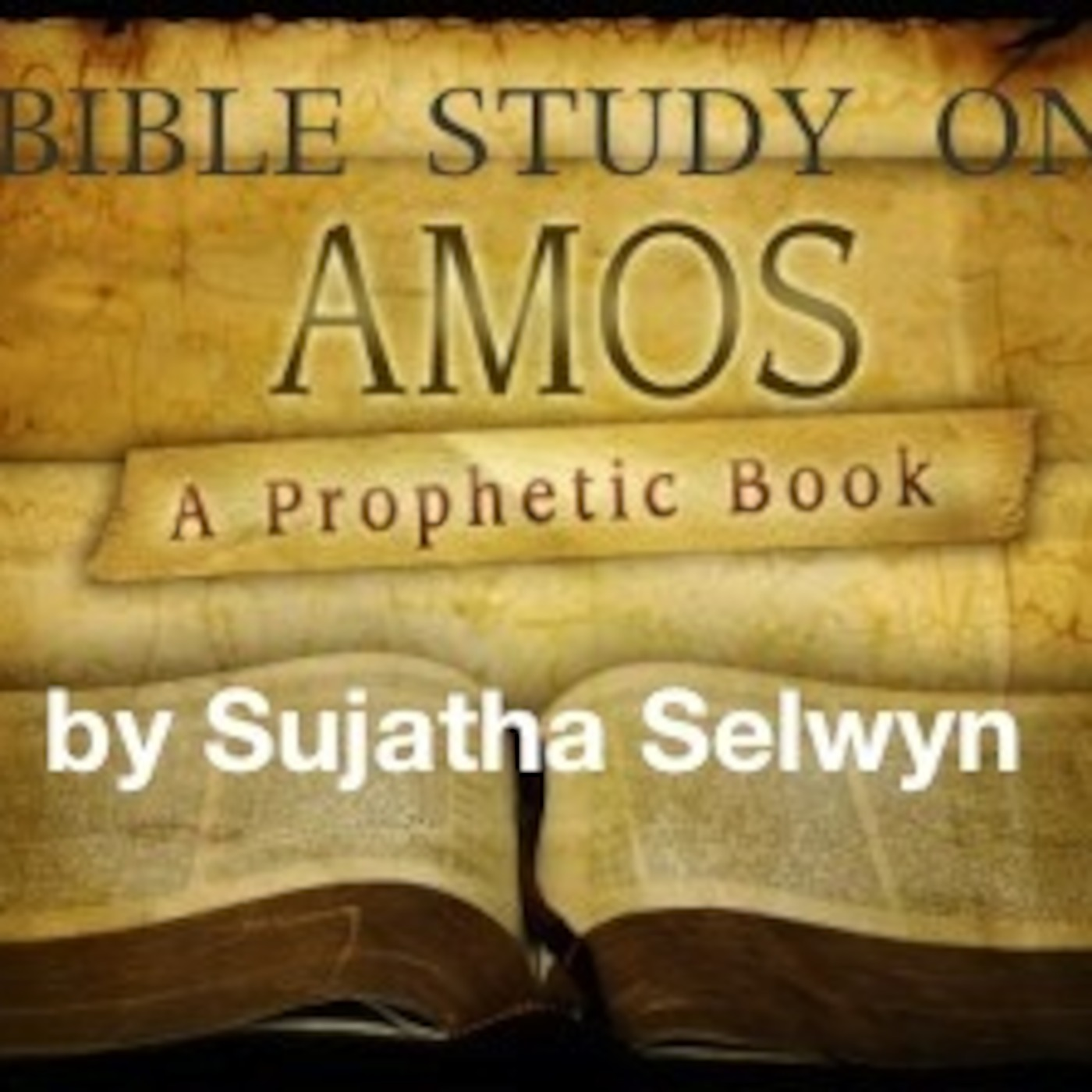 a review of amos 51 17 in the bible Read amos 8 commentary using matthew henry commentary on the whole bible (complete) study the bible online using commentary on amos 8 and more.