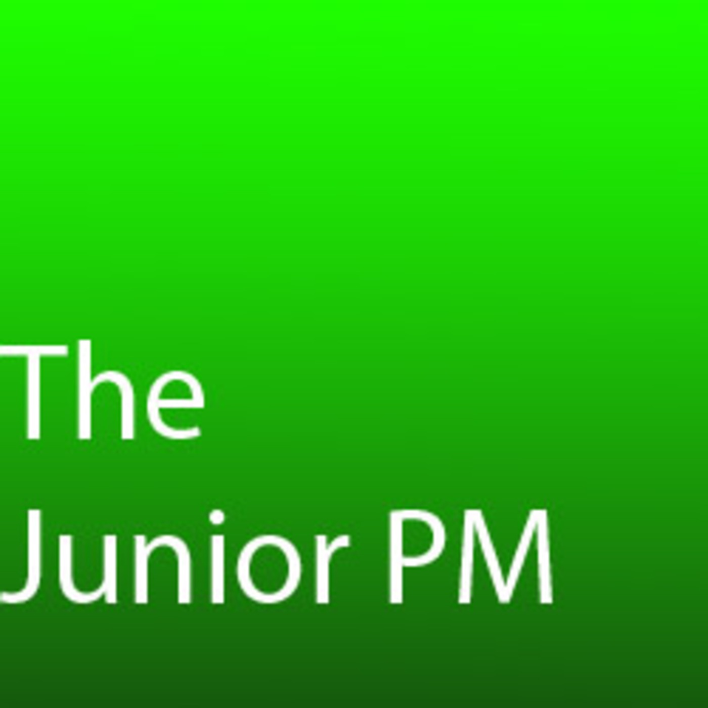 The Junior Project Manager