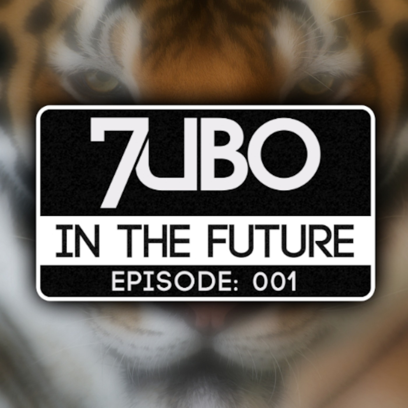 In The Future - Radio Show