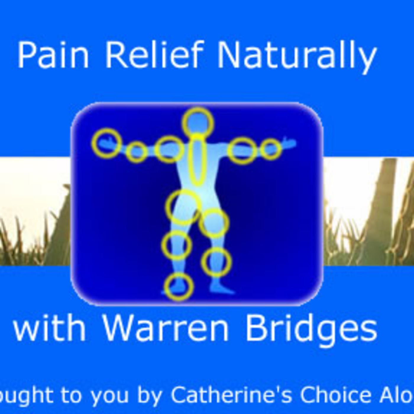 Pain Relief Naturally Logo