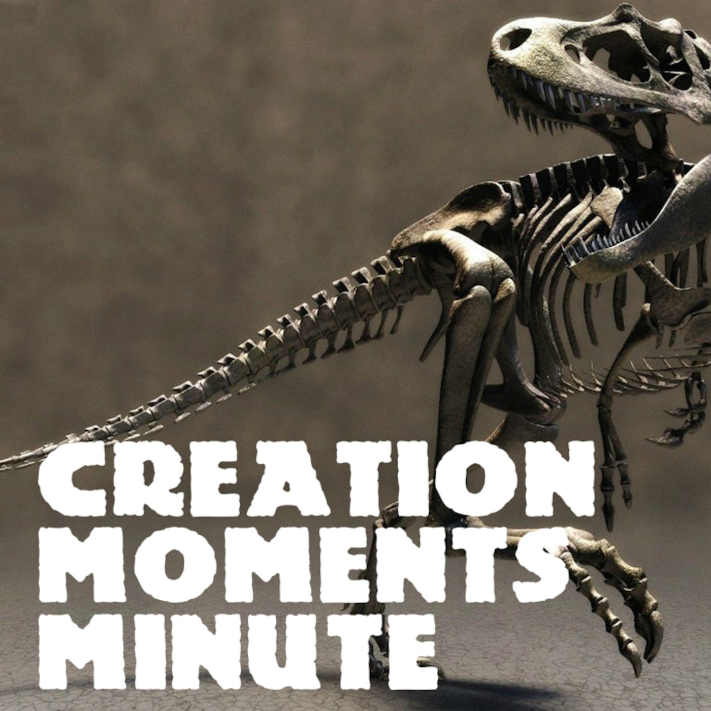 CREATION MOMENTS MINUTE