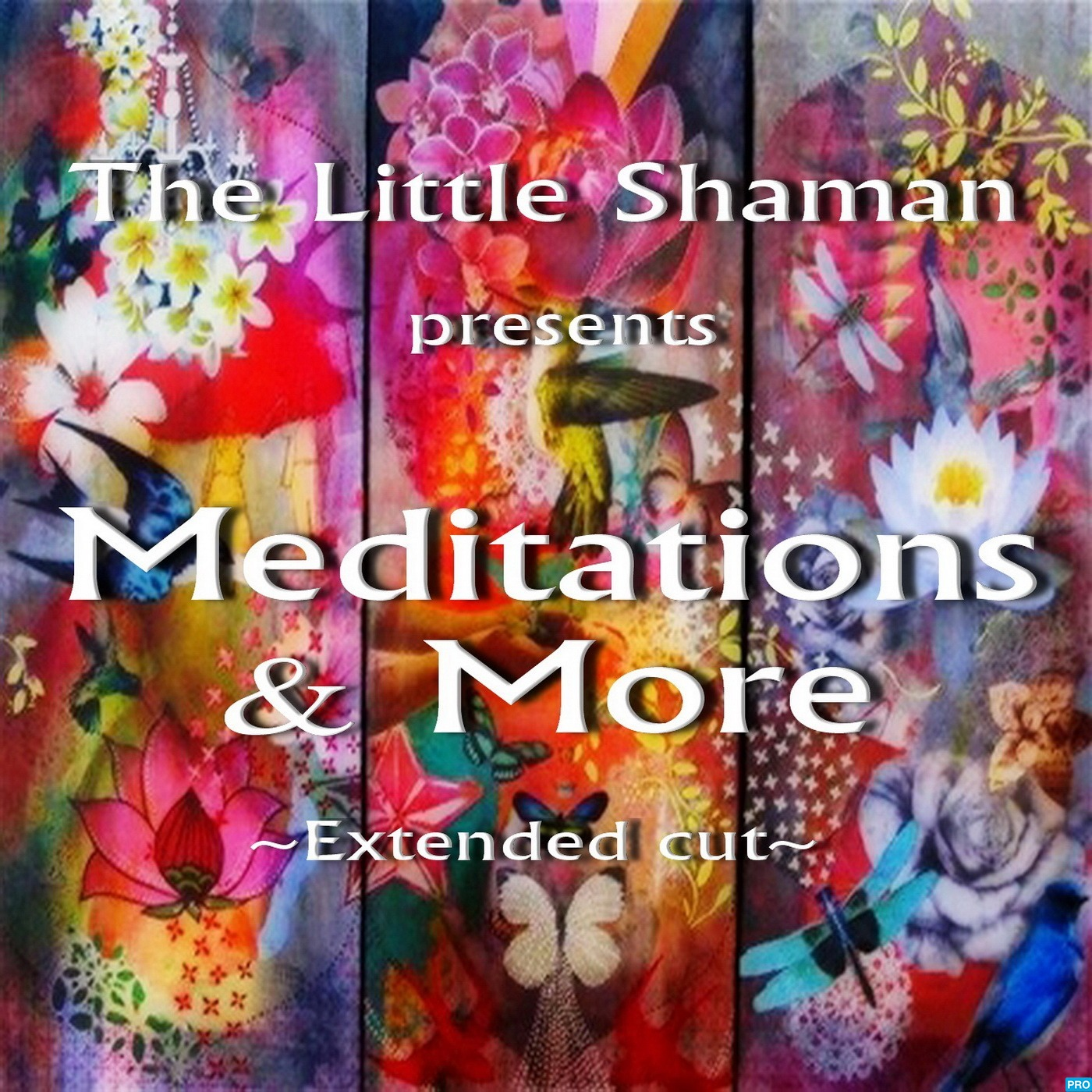 The Little Shaman: Meditations & More