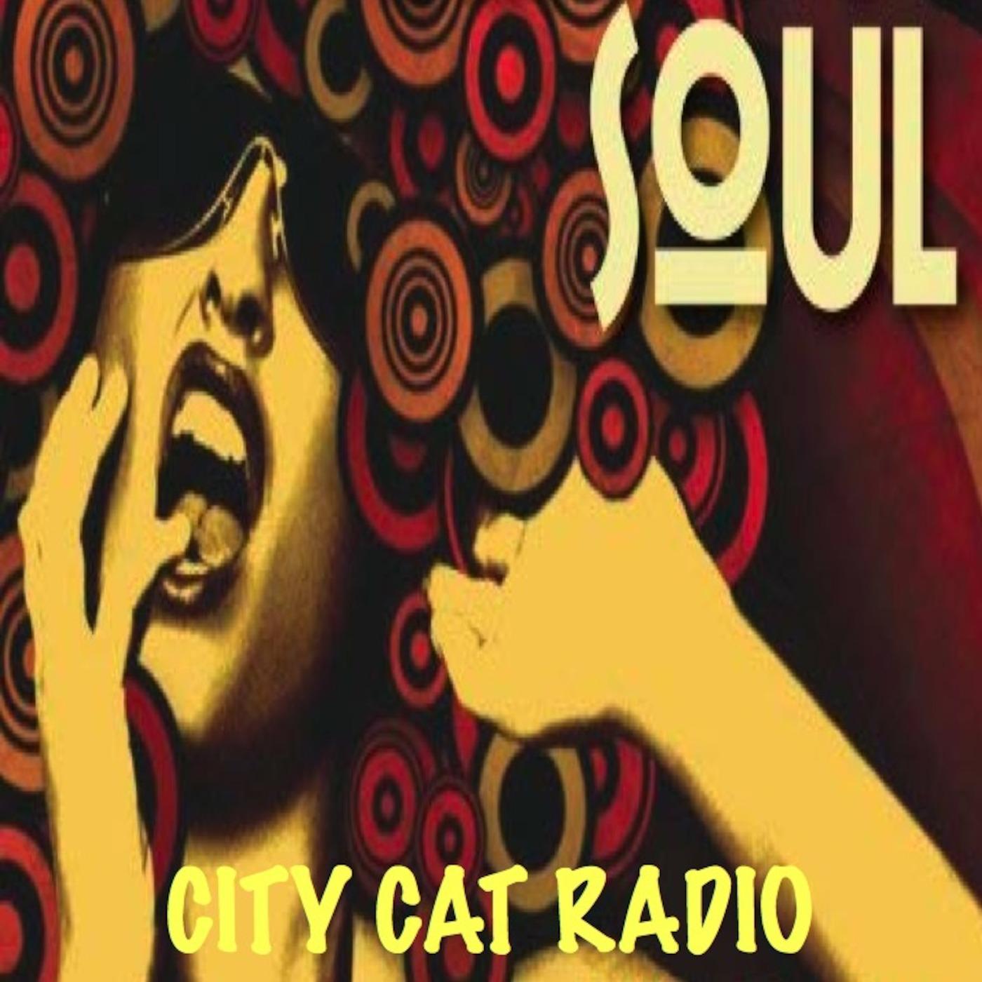 CITY CAT RADIO - ARIS INTERVIEW CITY CAT RADIO podcast