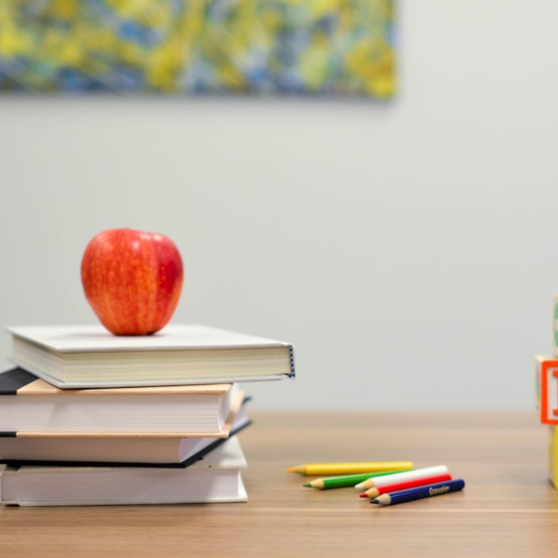 Læreplaner, tannlege og alkoholpress