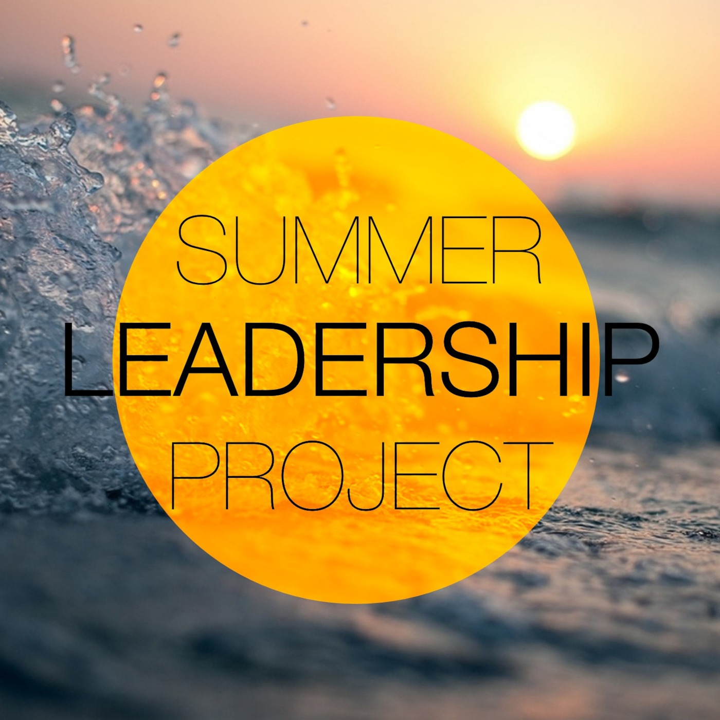 Summer Leadership Project