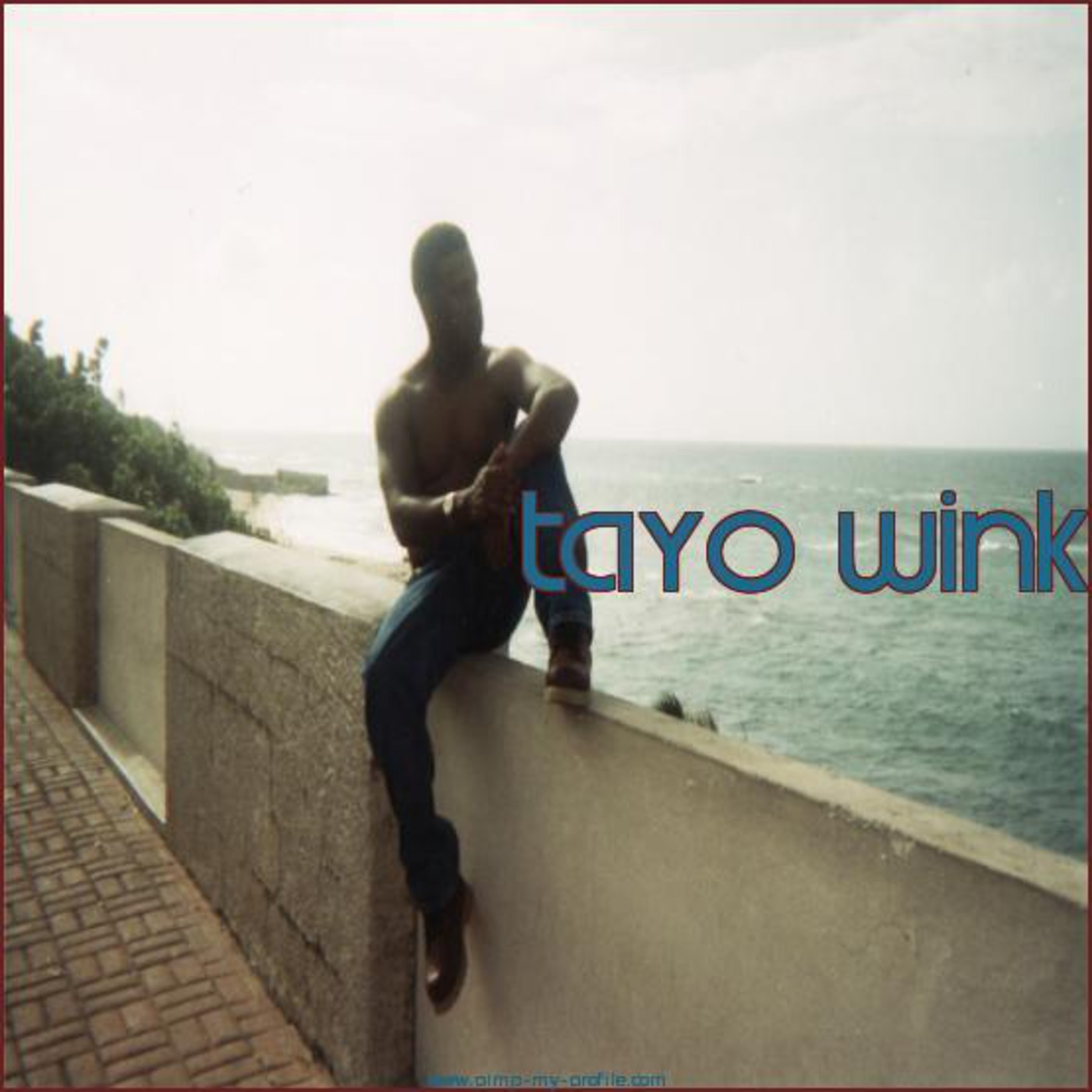 Tayo  Wink's Journey Through House