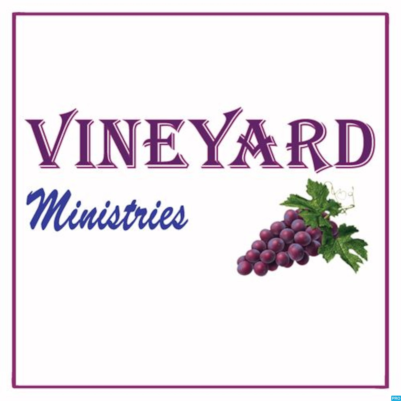 Vineyard Ministries' Podcast