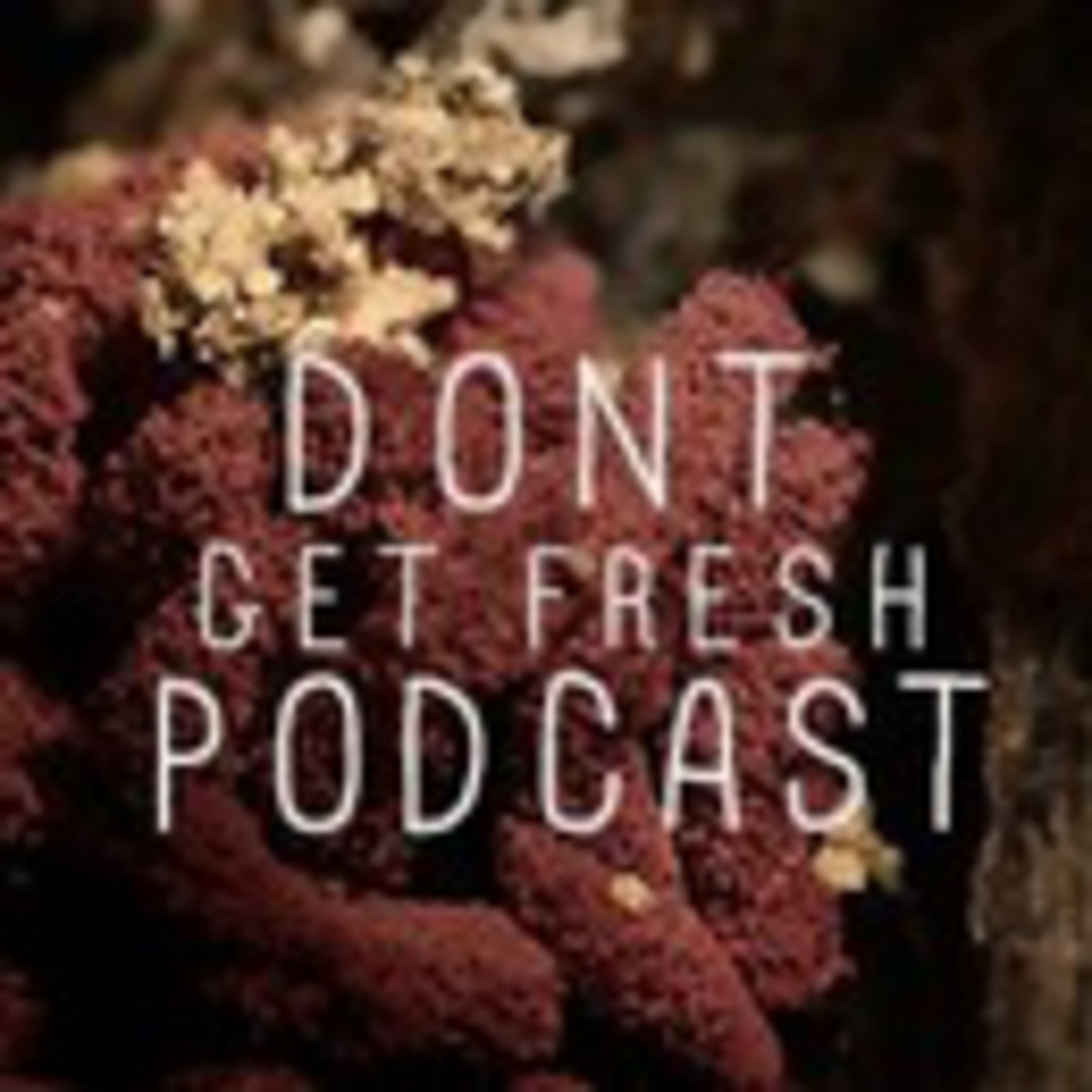 Don't Get Fresh Podcast
