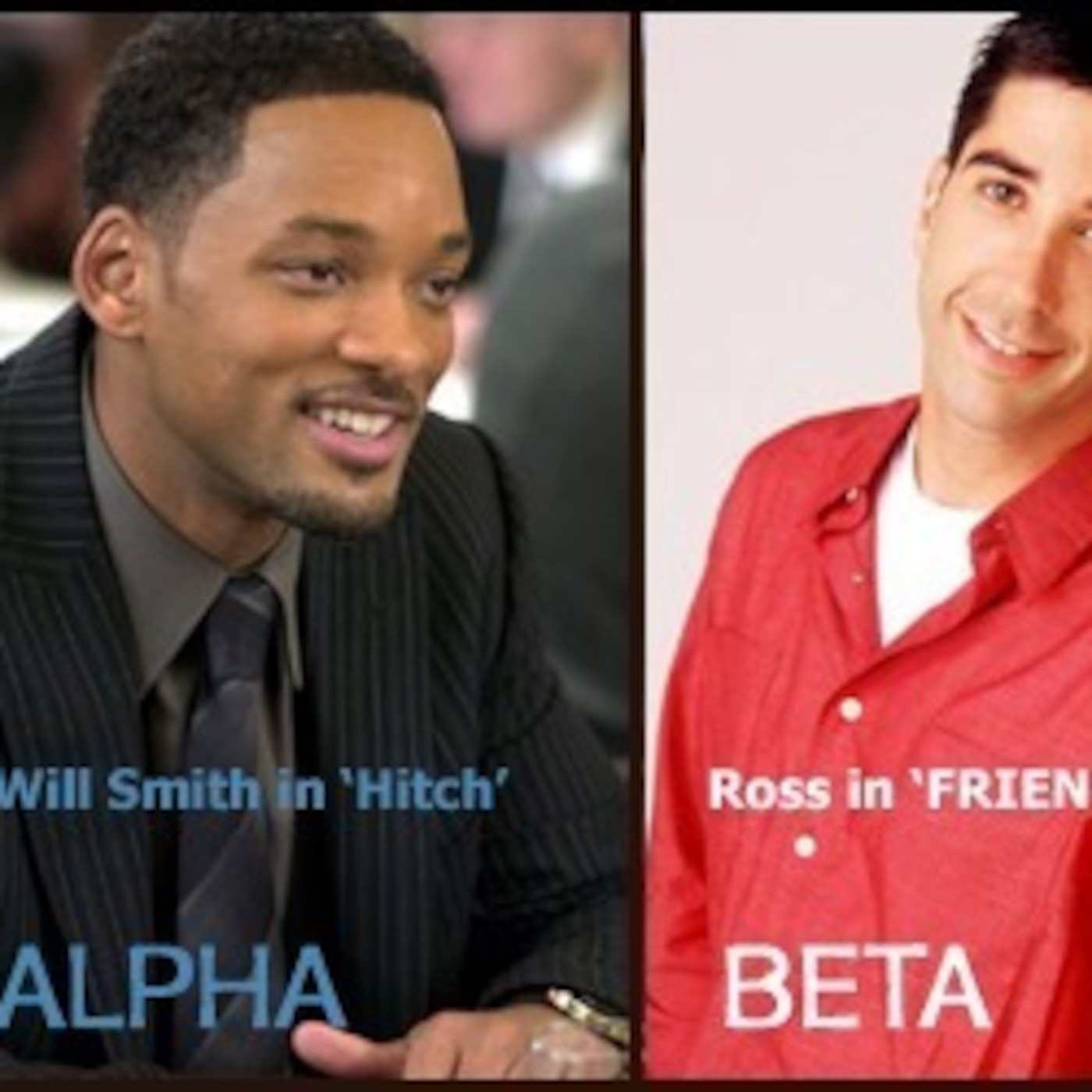 am i an alpha male or beta male