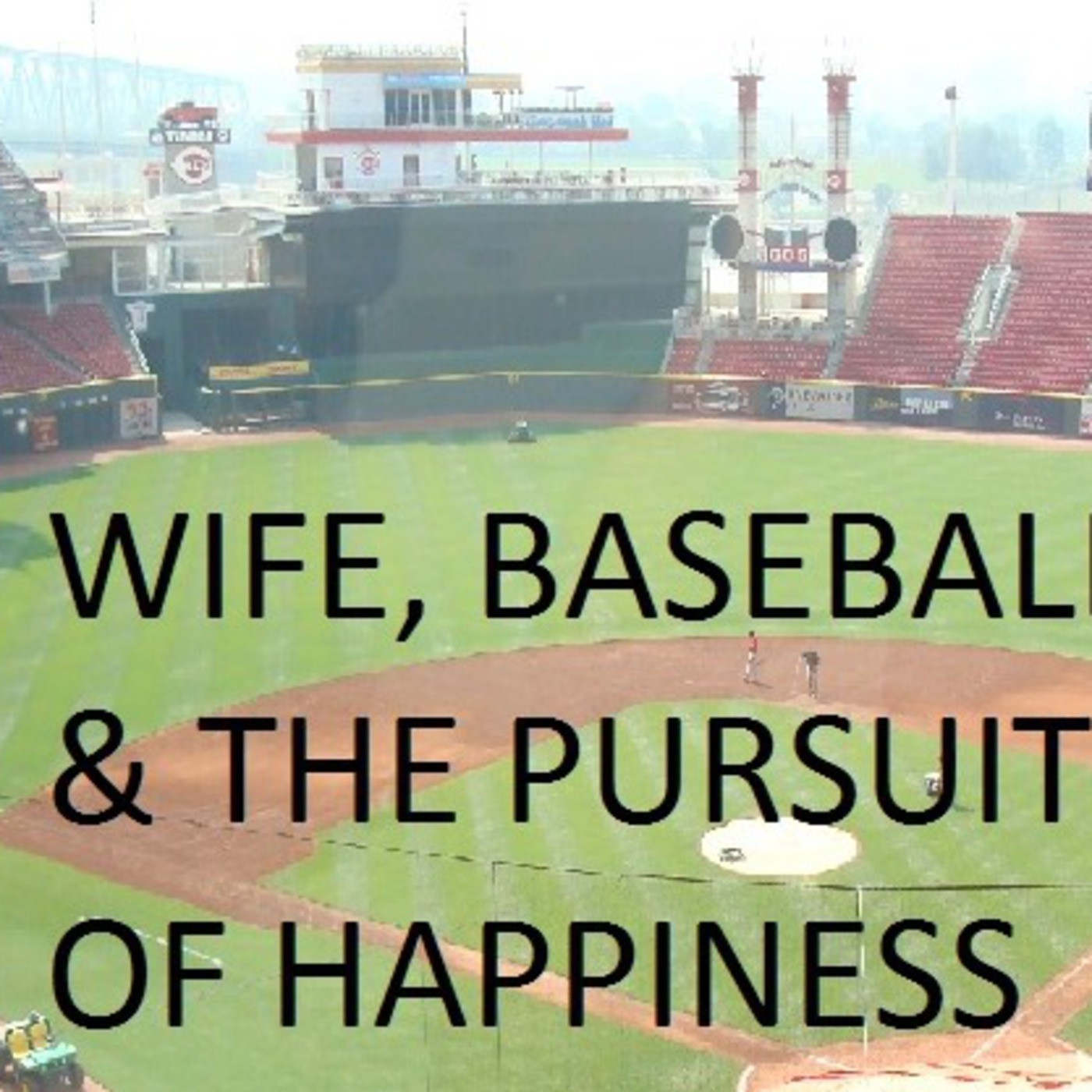 Wife, Baseball, and The Pursuit of Happiness