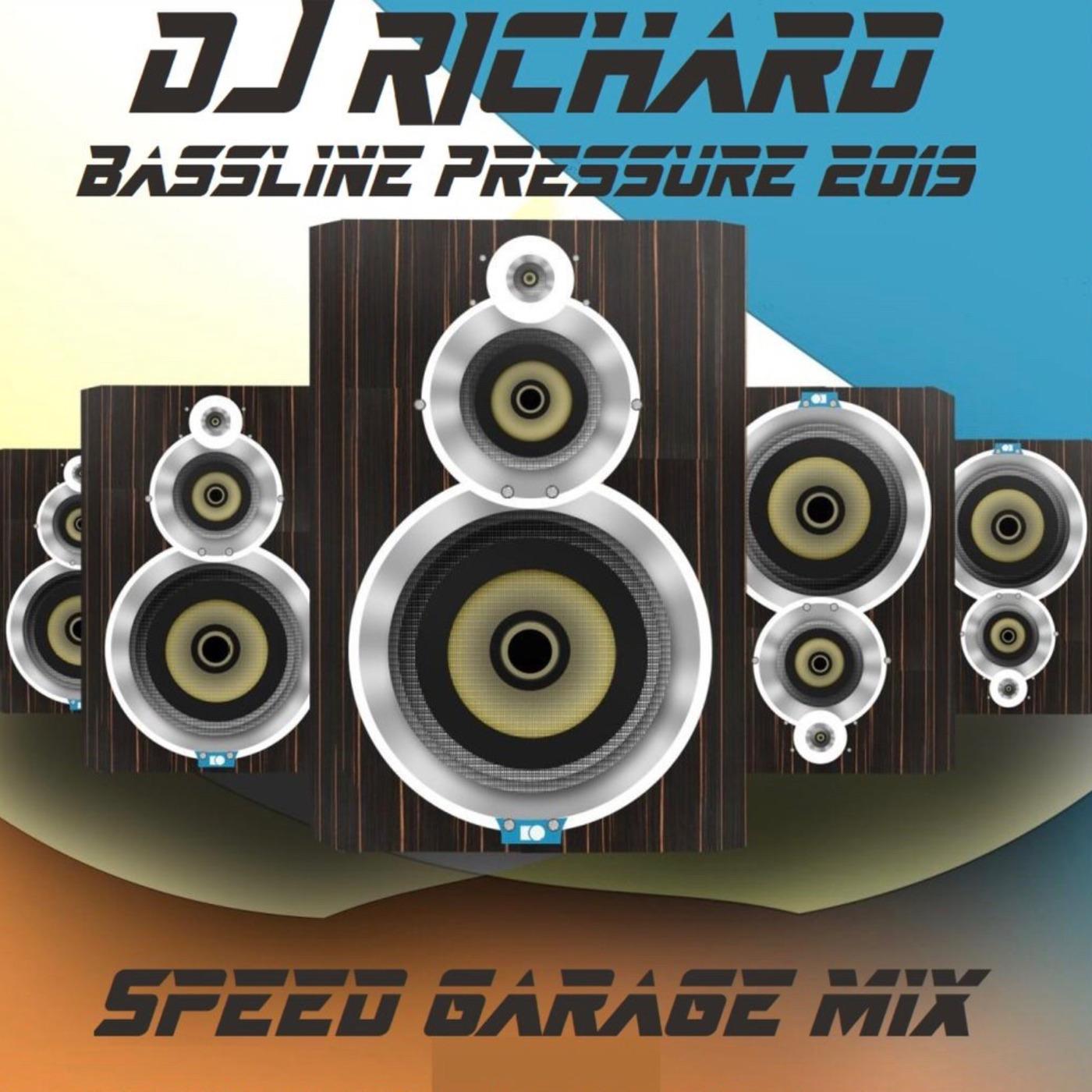 DJ Richard - Bassline Pressure 2019 - Vol 1 [Guest Mix