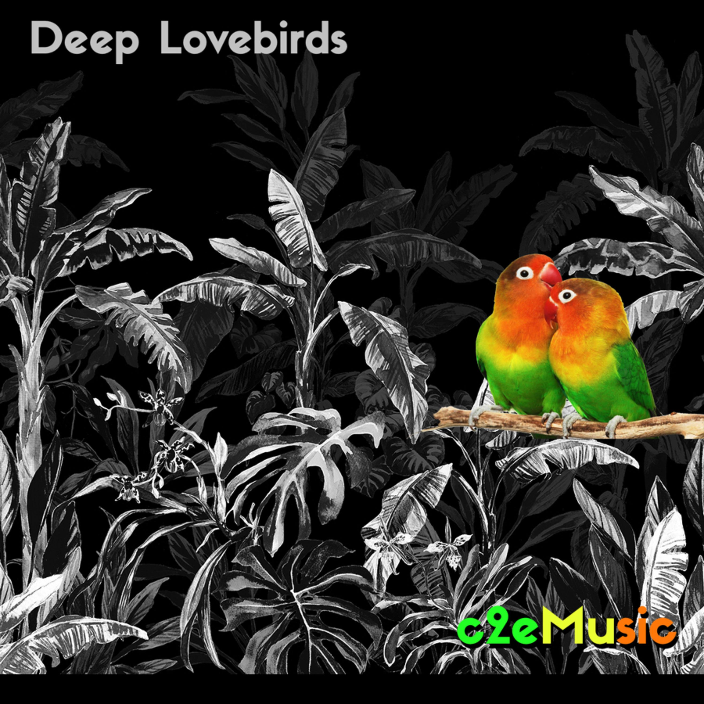 c2eMusic  - Deep Lovebirds