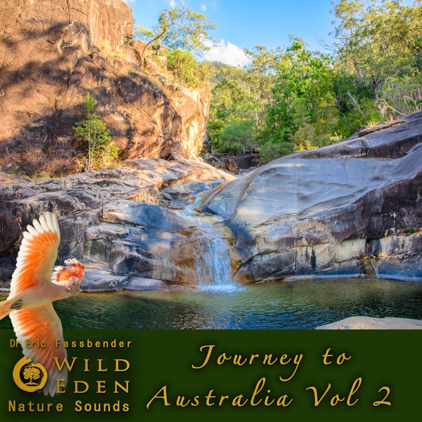 Episode 20 - A Walk in the Woods - Album Journey to Australia - Vol. 2