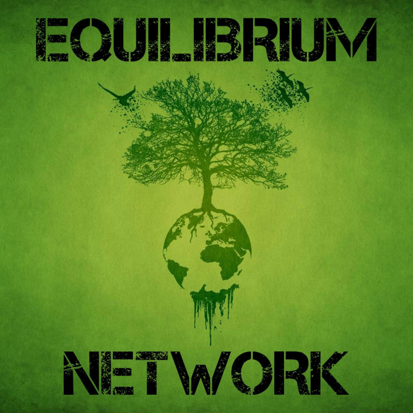 Equilibrium Network