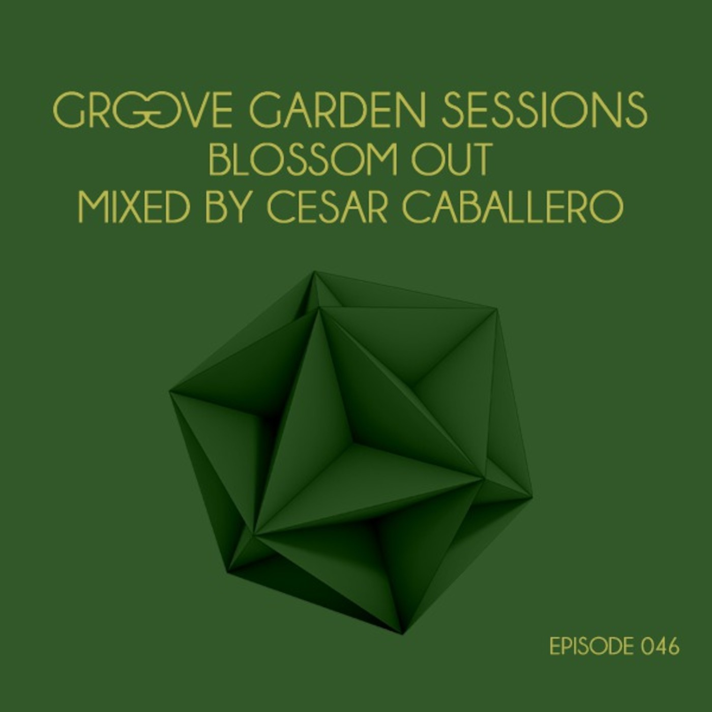 GROOVE GARDEN SESSIONS