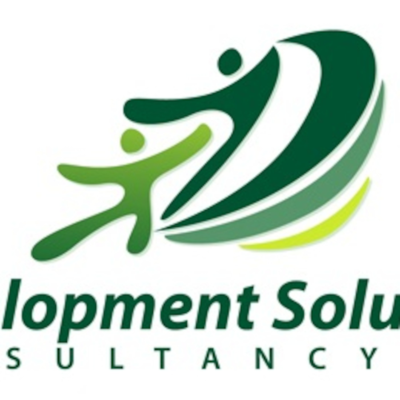 Development Solutions Conultancy Podcast
