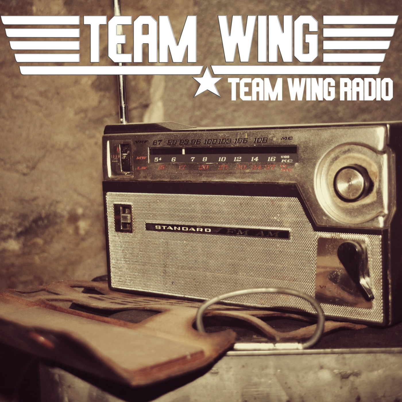 Team Wing Radio