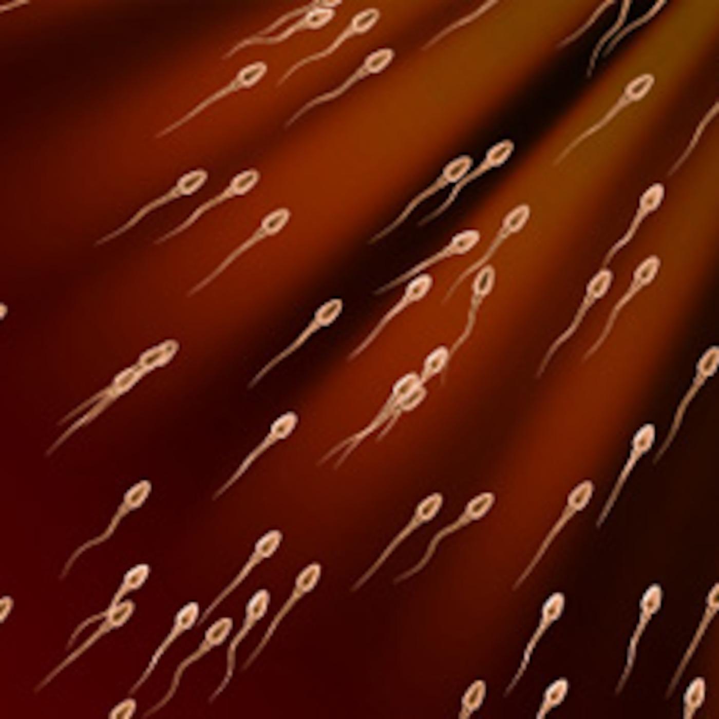 skolko-aktivna-sperma