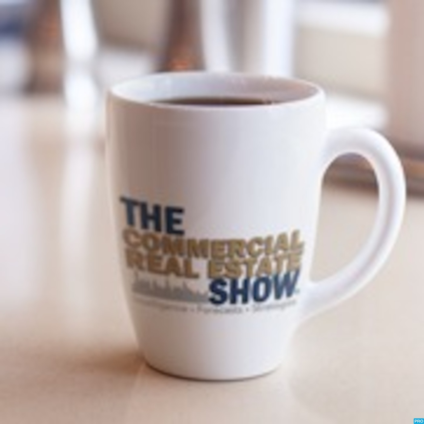 The Commercial Real Estate Show Logo