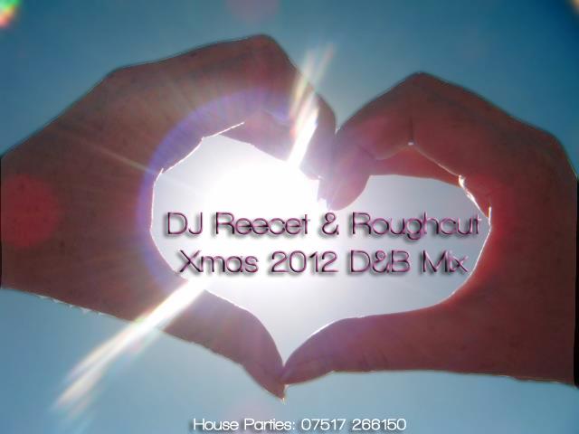 P.L.U.R Podcast (DJ Reecet & Roughcut)