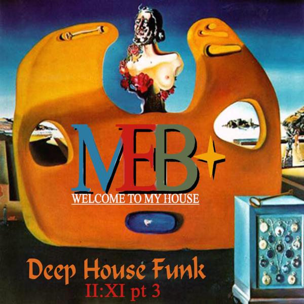 DEEP HOUSE FUNK II:XI pt 3