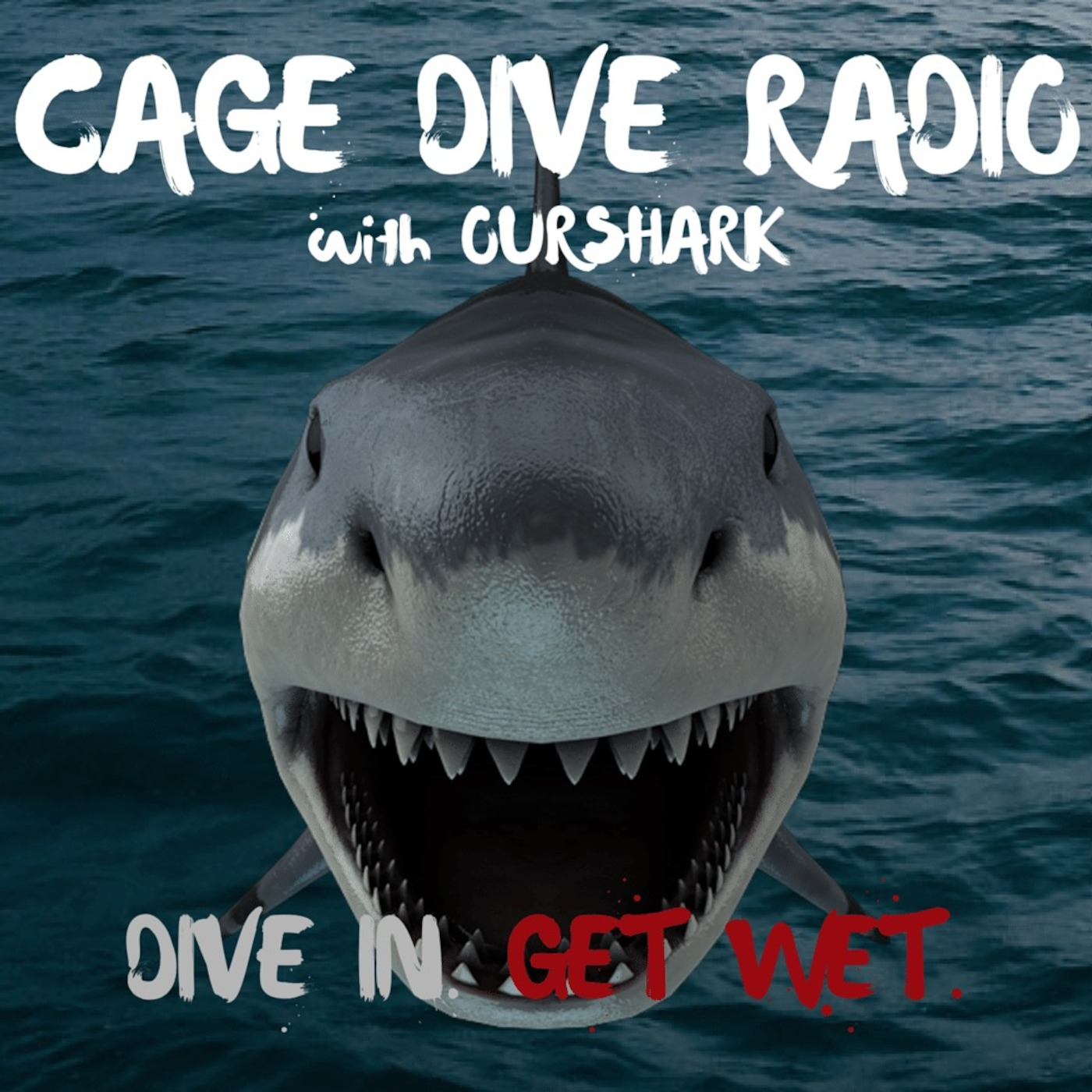 Cage Dive Radio with OurShark