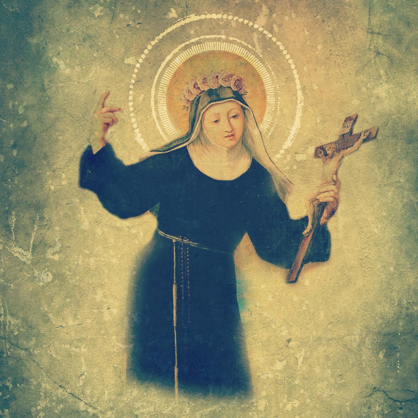 2019 22nd Sunday Of Ordinary Time, Year C Fr  Bryan Ochs