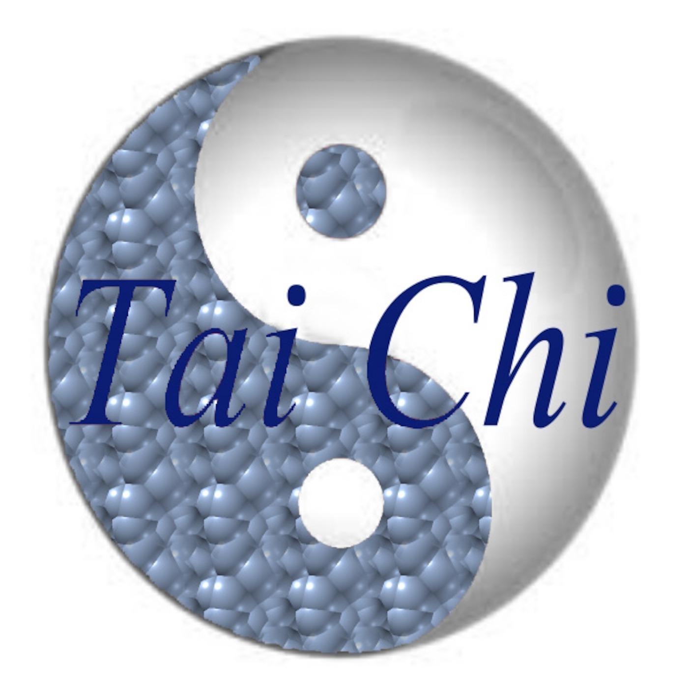 John Vihilidal's Tai Chi