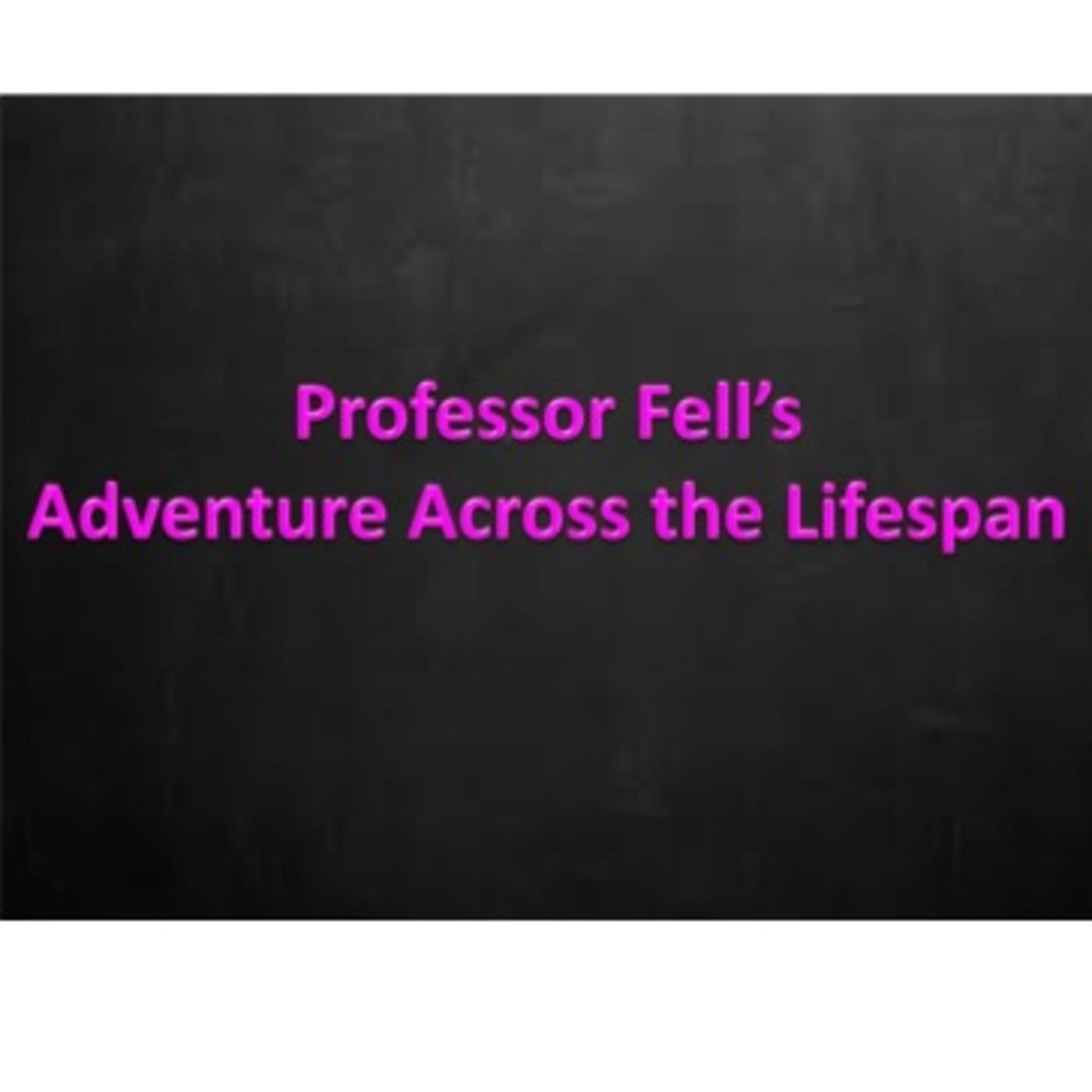 Professor Fell's Adventure Across the Lifespan