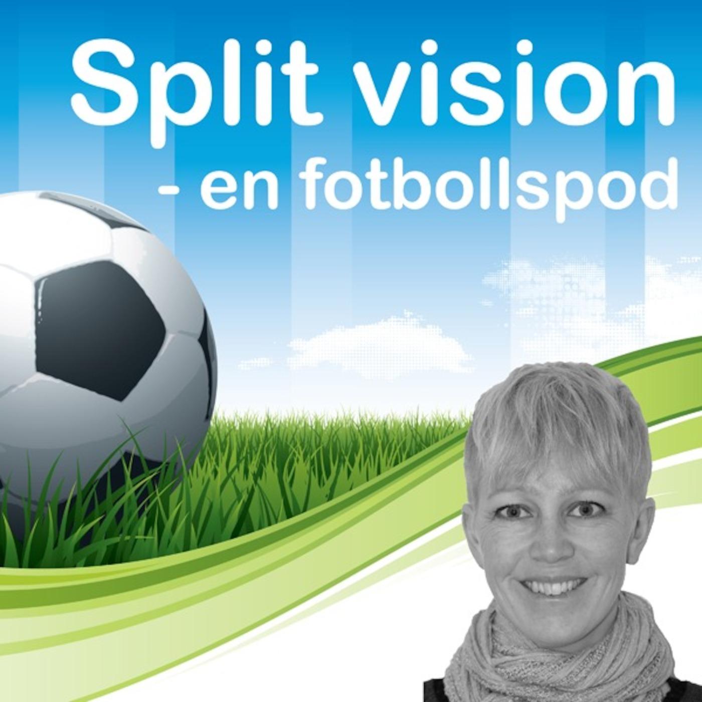 Split Vision