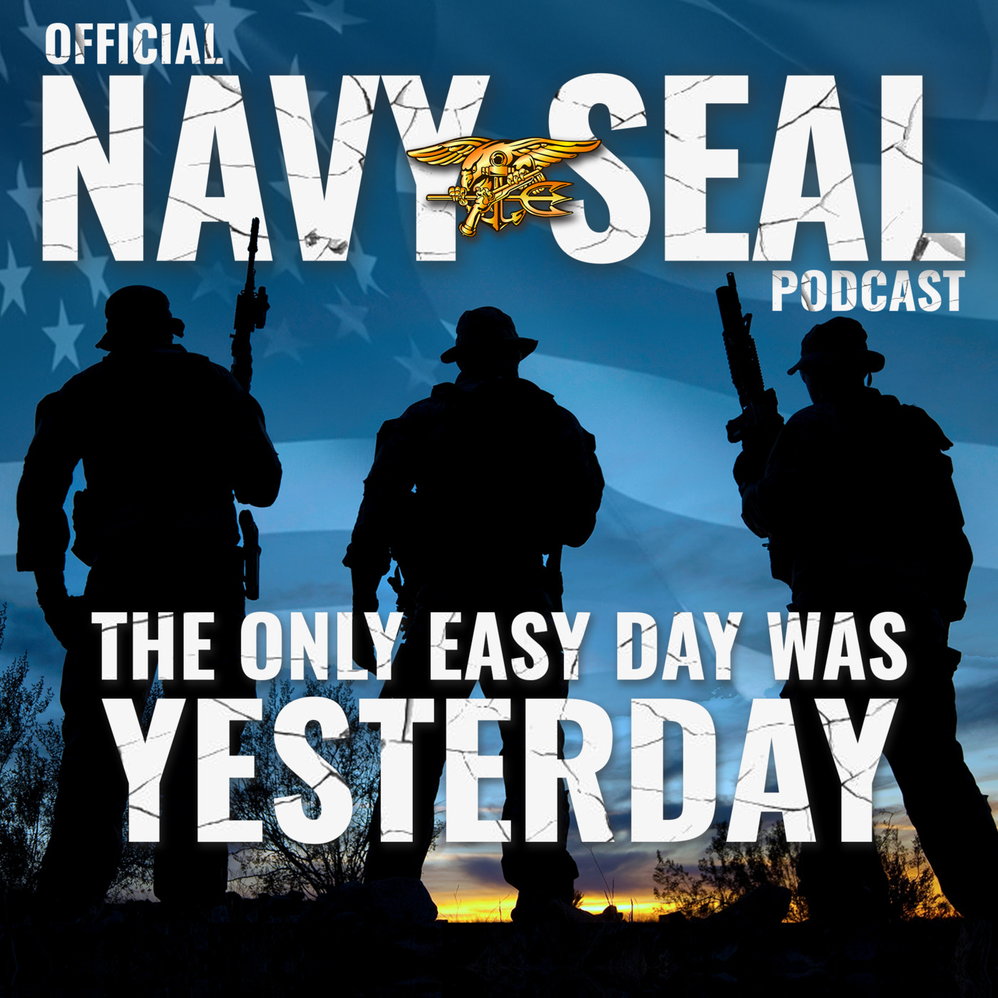 The Official Navy SEAL Podcast | Listen to the Most Popular Podcasts