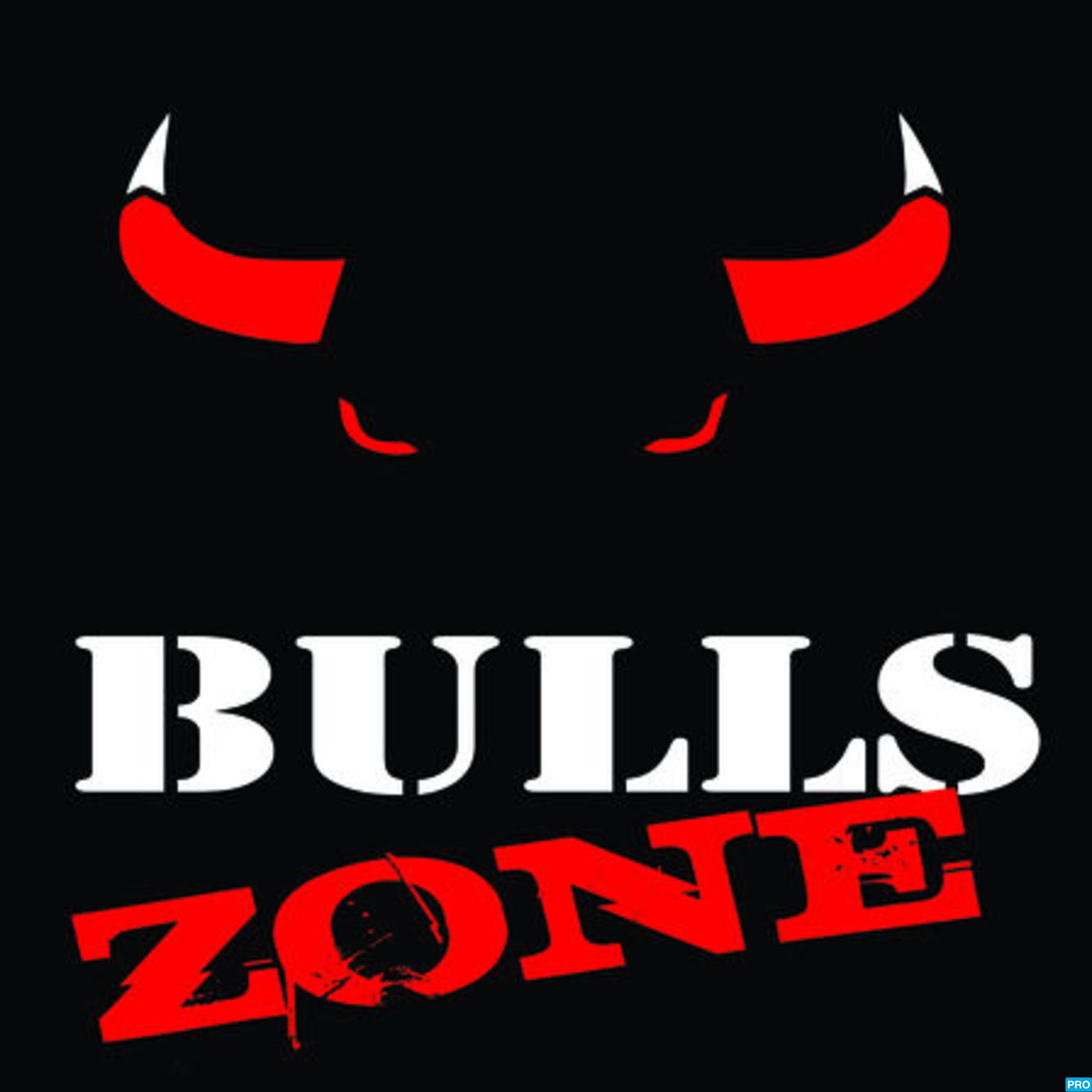 Chicago Bulls Zone