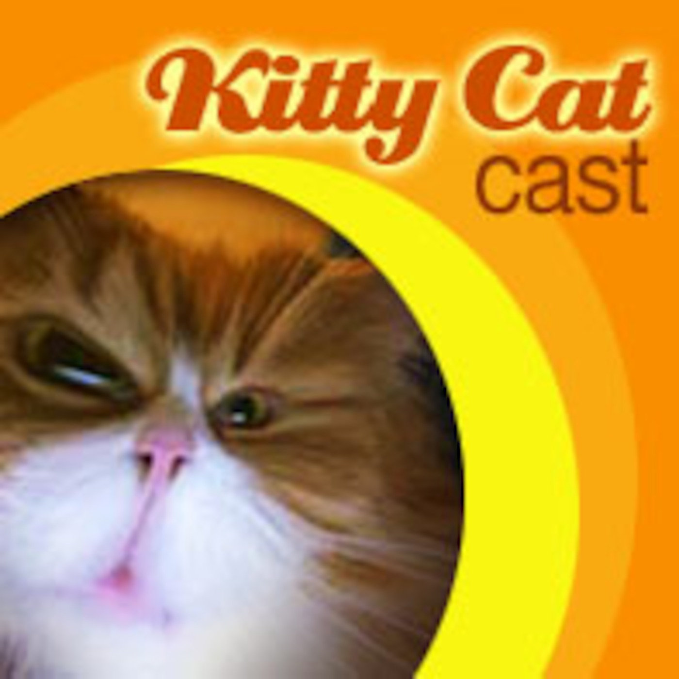 pod|fanatic | Podcast: Kitty Cat Cast | Episode: Vidcast #44