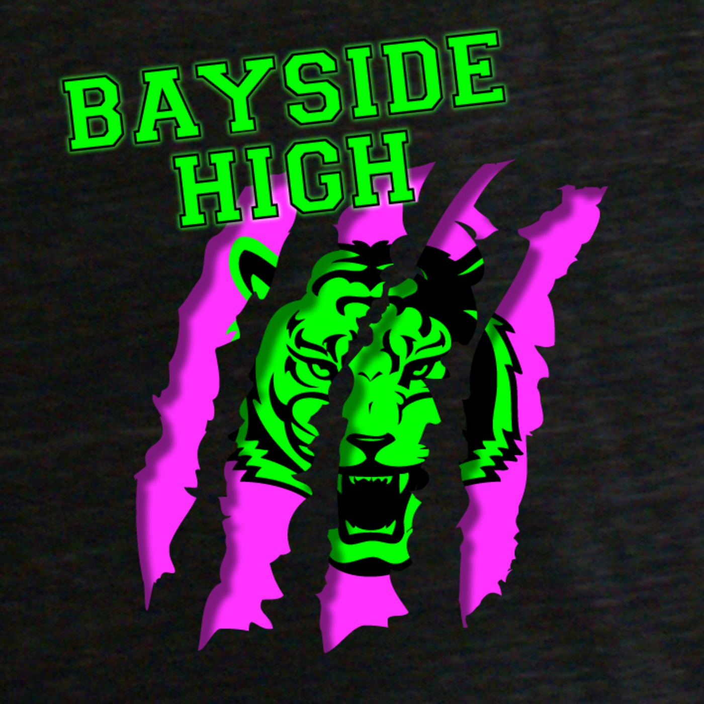 Bayside High - Extracurricular Activities