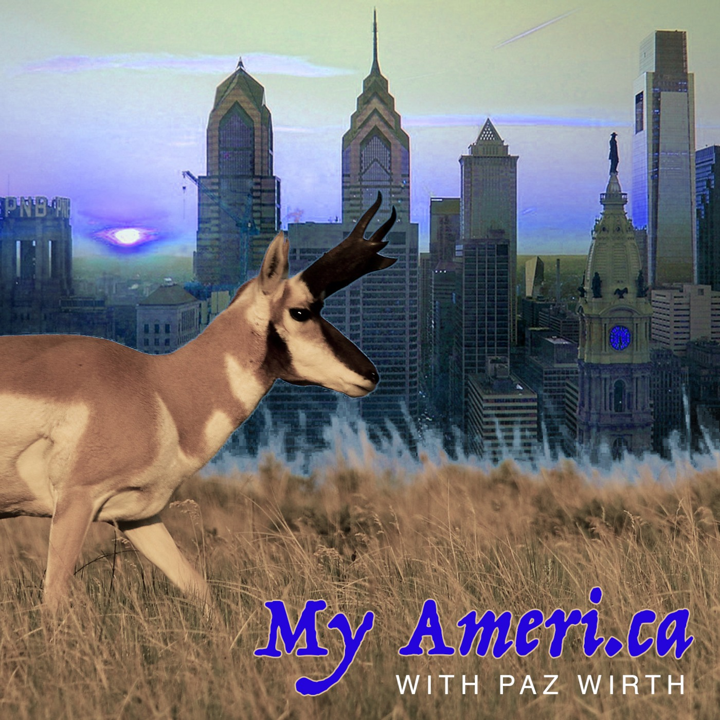 My America with PAZ WIRTH